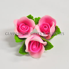 6 Small Pink Roses with Leaves