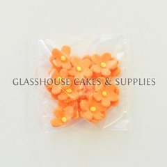 Pack of 20 Small Flowers - Orange