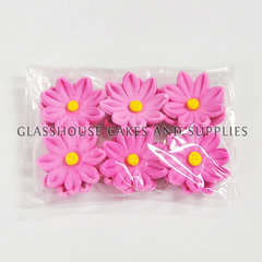 Pink and Yellow Icing Gerberas