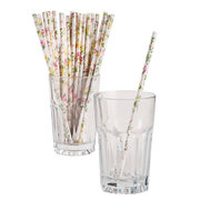 Cardboard Floral Patterned Straws robert gordon