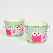 Mint Coloured Owl Cupcake Cases