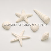 White Sea Shells Edible Toppers - 6 pack