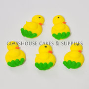 Yellow Duck On Grass Edible Toppers - 12 pack